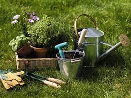 Cuidados del jardín – Nivel 1